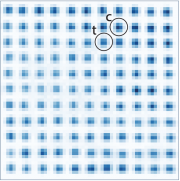 fluorescence averages, seen as intensity of blue, is shown for an 11 x 11 qubit array, with control and target sites circled
